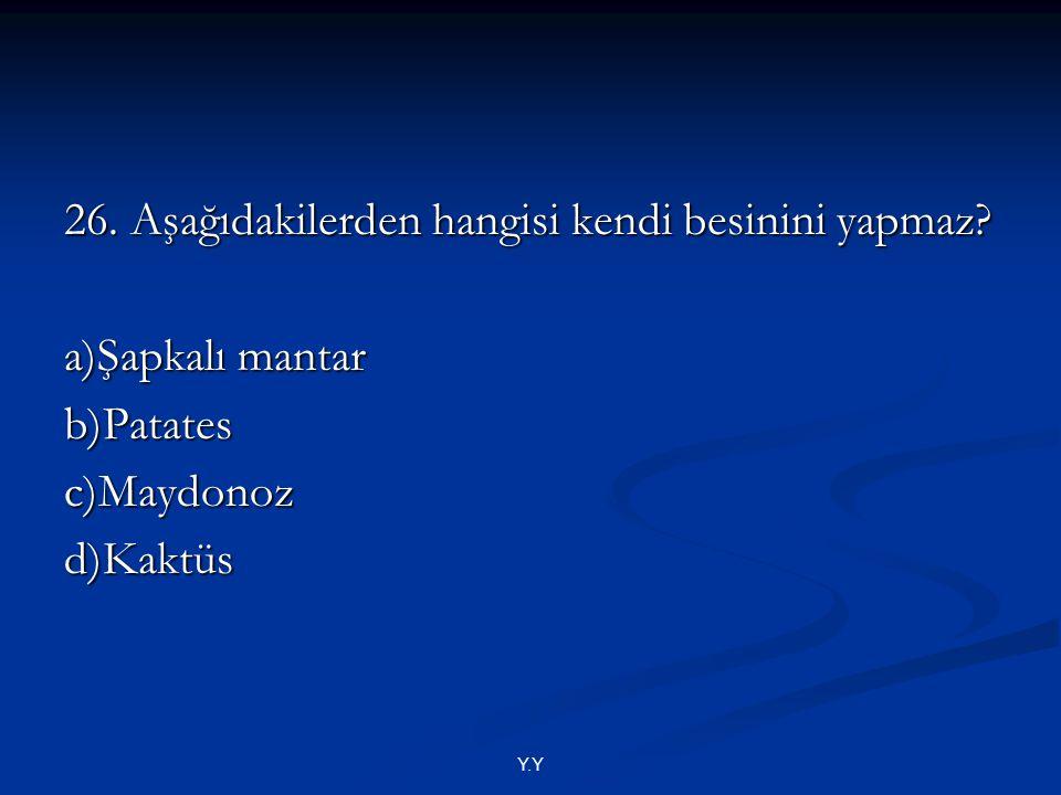 Y.Y 26. Aşağıdakilerden hangisi kendi besinini yapmaz? a)Şapkalı mantar b)Patatesc)Maydonozd)Kaktüs