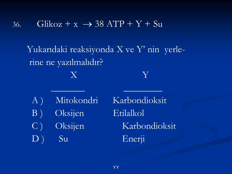Y.Y 36. Glikoz + x  38 ATP + Y + Su Yukarıdaki reaksiyonda X ve Y' nin yerle- rine ne yazılmalıdır? X Y _______ ________ A ) Mitokondri Karbondioksit