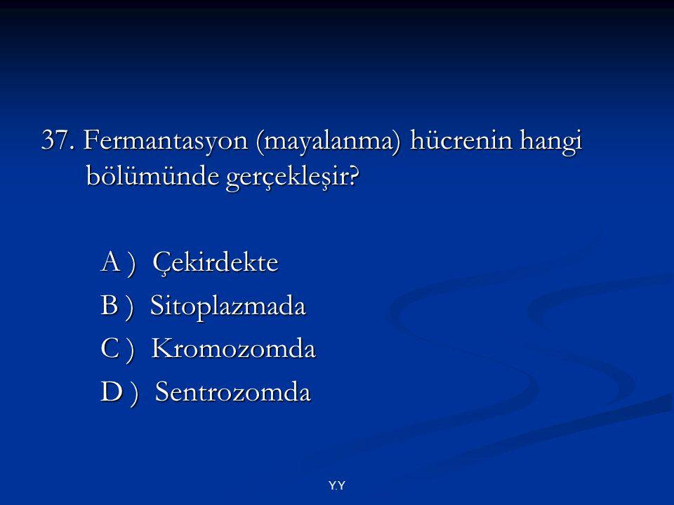 Y.Y 37. Fermantasyon (mayalanma) hücrenin hangi bölümünde gerçekleşir? A ) Çekirdekte A ) Çekirdekte B ) Sitoplazmada B ) Sitoplazmada C ) Kromozomda