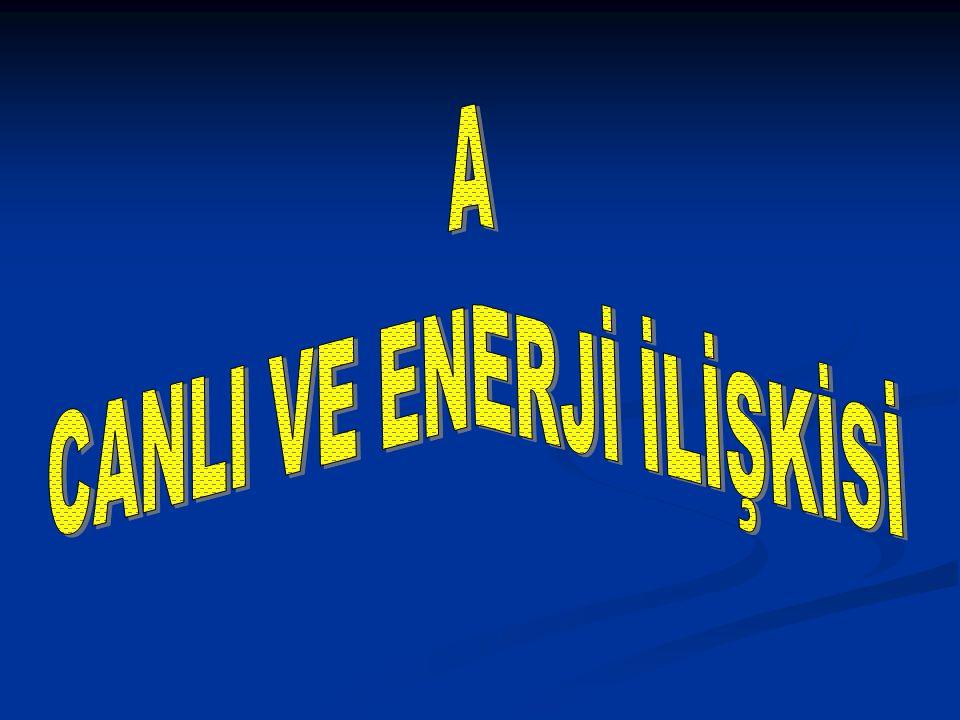 Enerji bir cismin ya da bir sistemin iş yapabilme yeteneğidir.