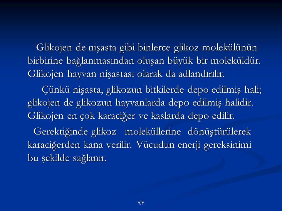 Y.Y Glikojen de nişasta gibi binlerce glikoz molekülünün birbirine bağlanmasından oluşan büyük bir moleküldür. Glikojen hayvan nişastası olarak da adl