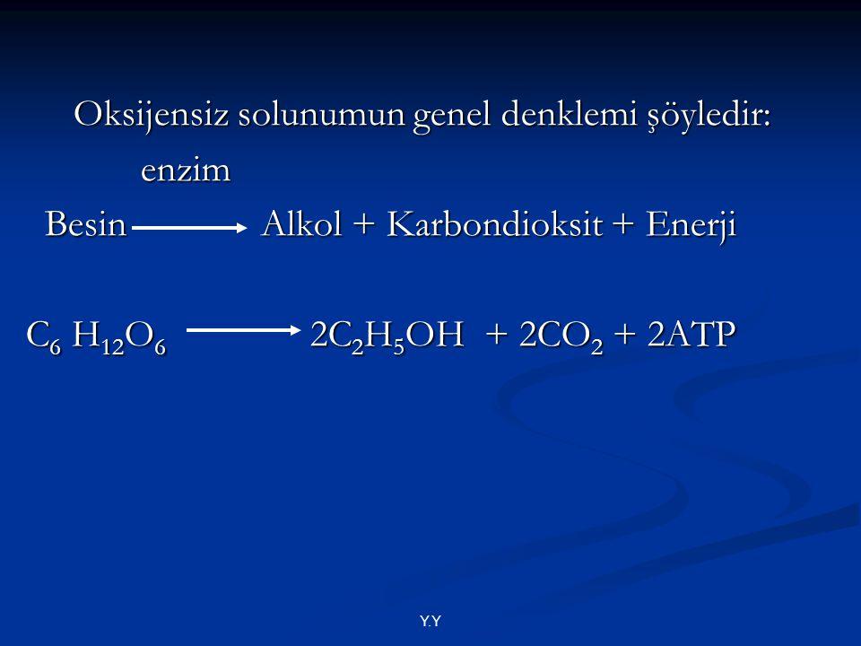 Y.Y Oksijensiz solunumun genel denklemi şöyledir: Oksijensiz solunumun genel denklemi şöyledir: enzim enzim Besin Alkol + Karbondioksit + Enerji Besin