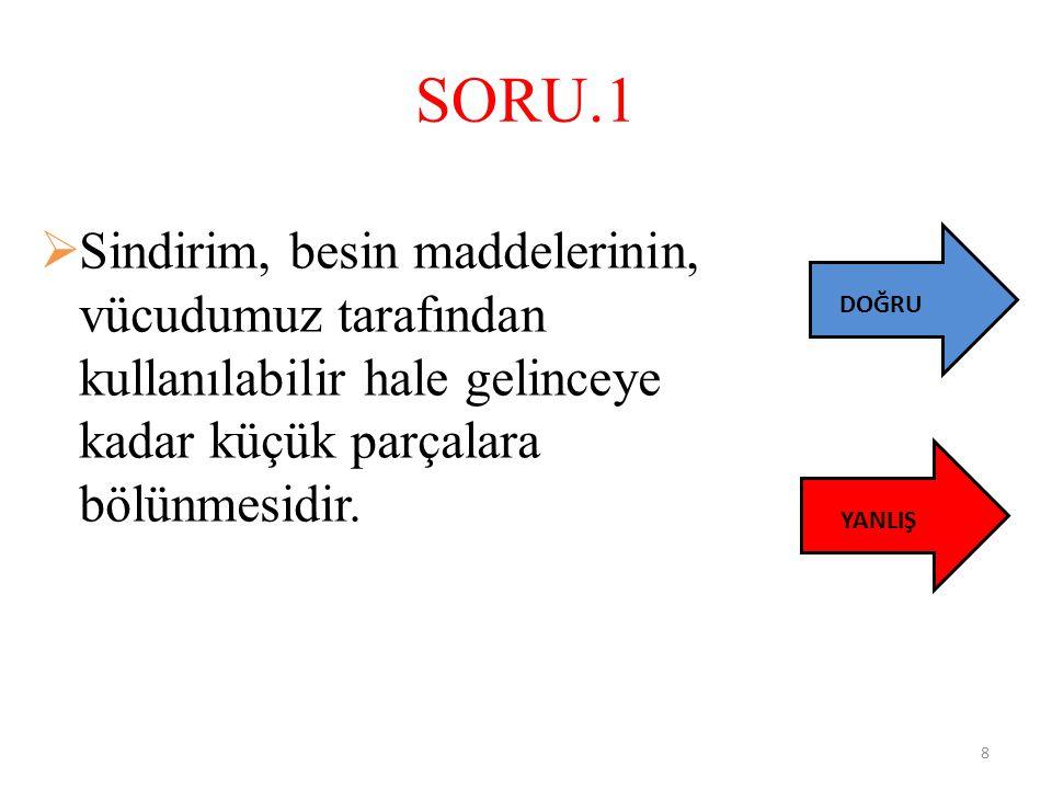 SORU.2 Aşağıdakilerden hangisi sindirim sistemi ana organları içerisinde yer almaz.