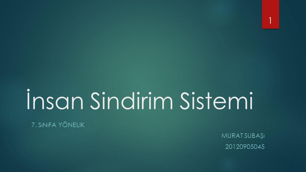 İnsan Sindirim Sistemi 7. SıNıFA YÖNELIK MURAT SUBAŞı 20120905045 1