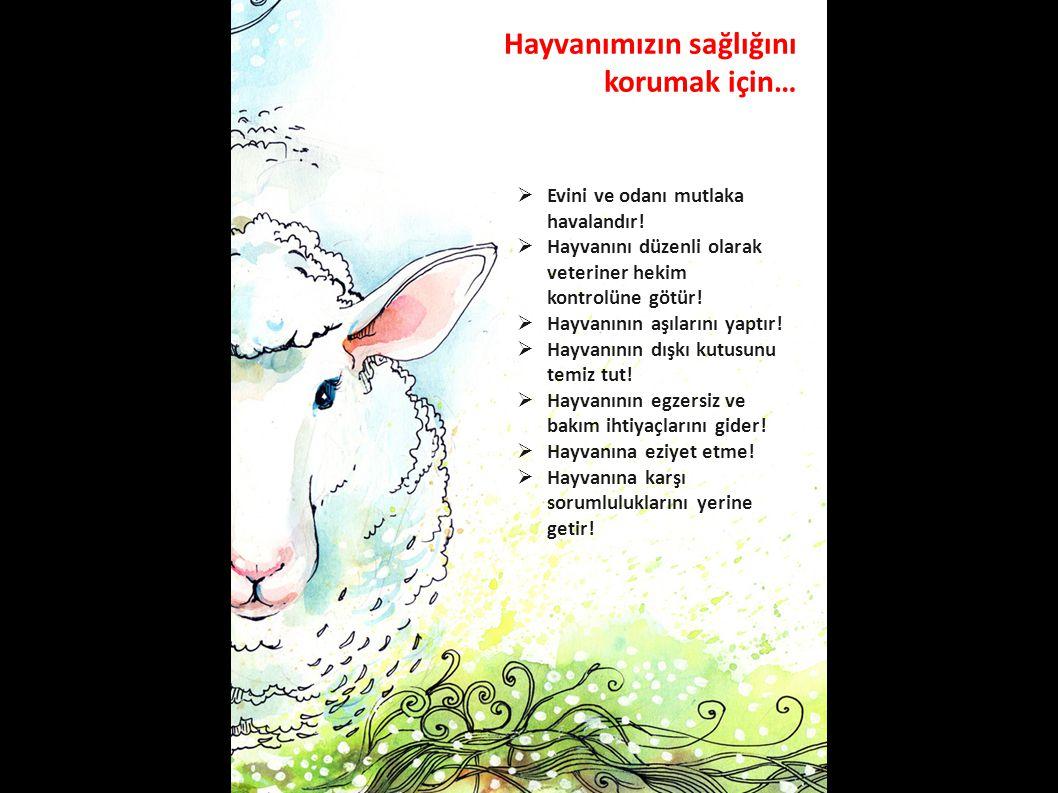Hayvanımızın sağlığını korumak için…  Evini ve odanı mutlaka havalandır!  Hayvanını düzenli olarak veteriner hekim kontrolüne götür!  Hayvanının aş