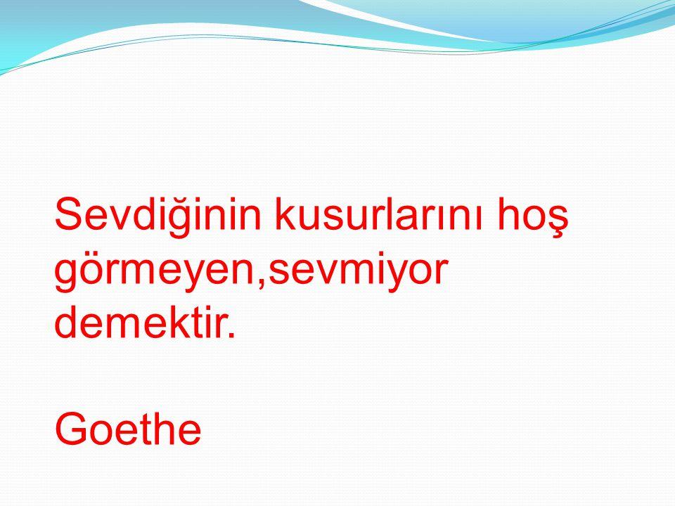 Sevdiğinin kusurlarını hoş görmeyen,sevmiyor demektir. Goethe