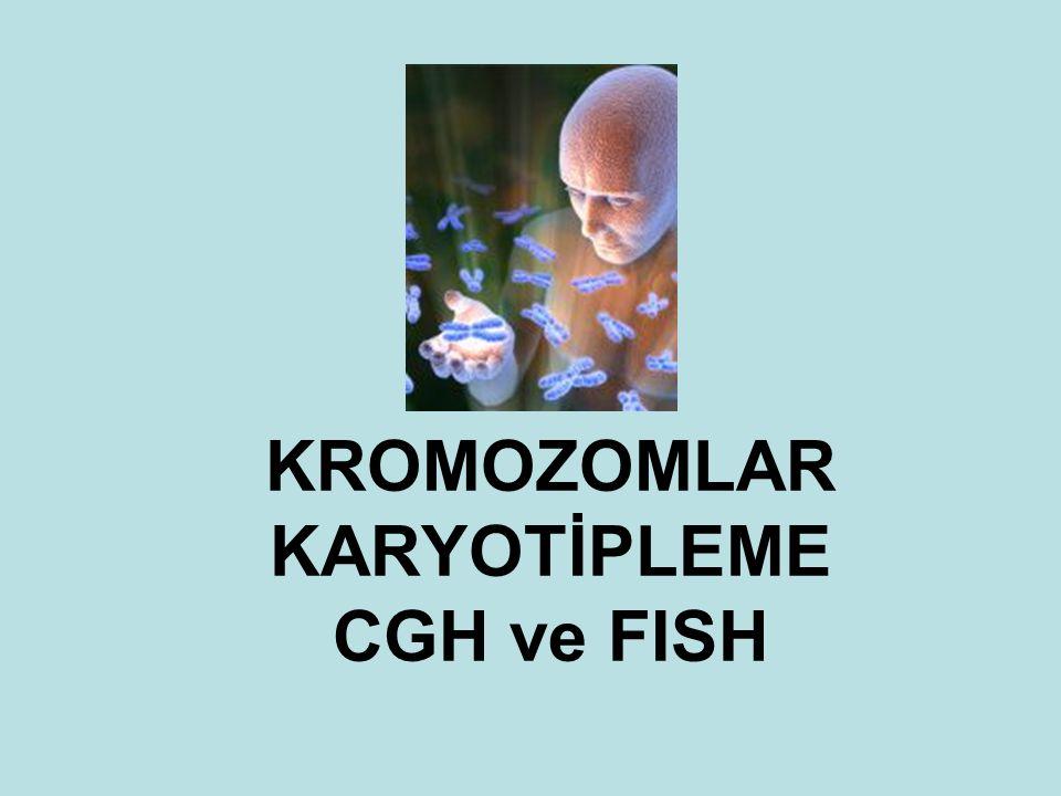 Fluorescent In-Situ Hybridization (FISH)
