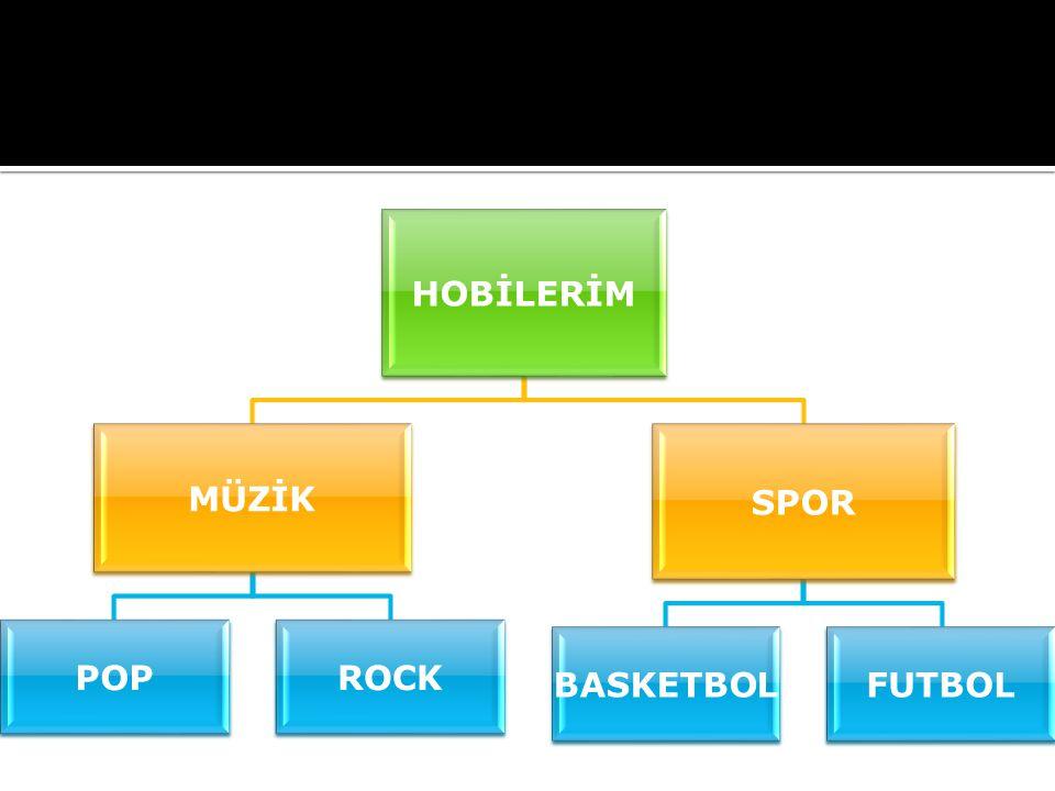 HOBİLERİM MÜZİK POPROCK SPOR BASKETBOLFUTBOL
