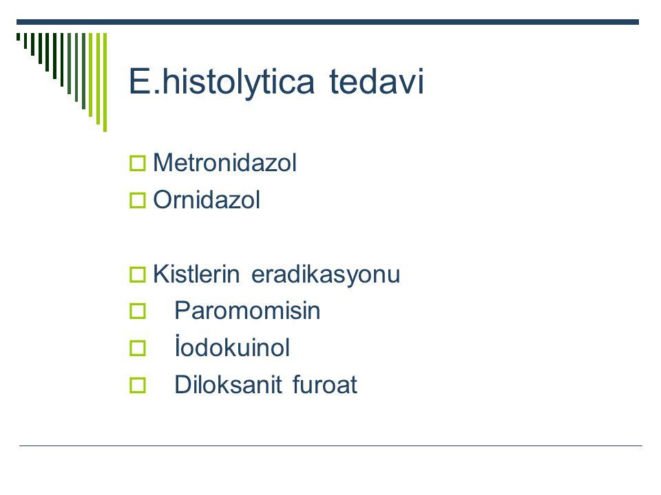 E.histolytica tedavi  Metronidazol  Ornidazol  Kistlerin eradikasyonu  Paromomisin  İodokuinol  Diloksanit furoat