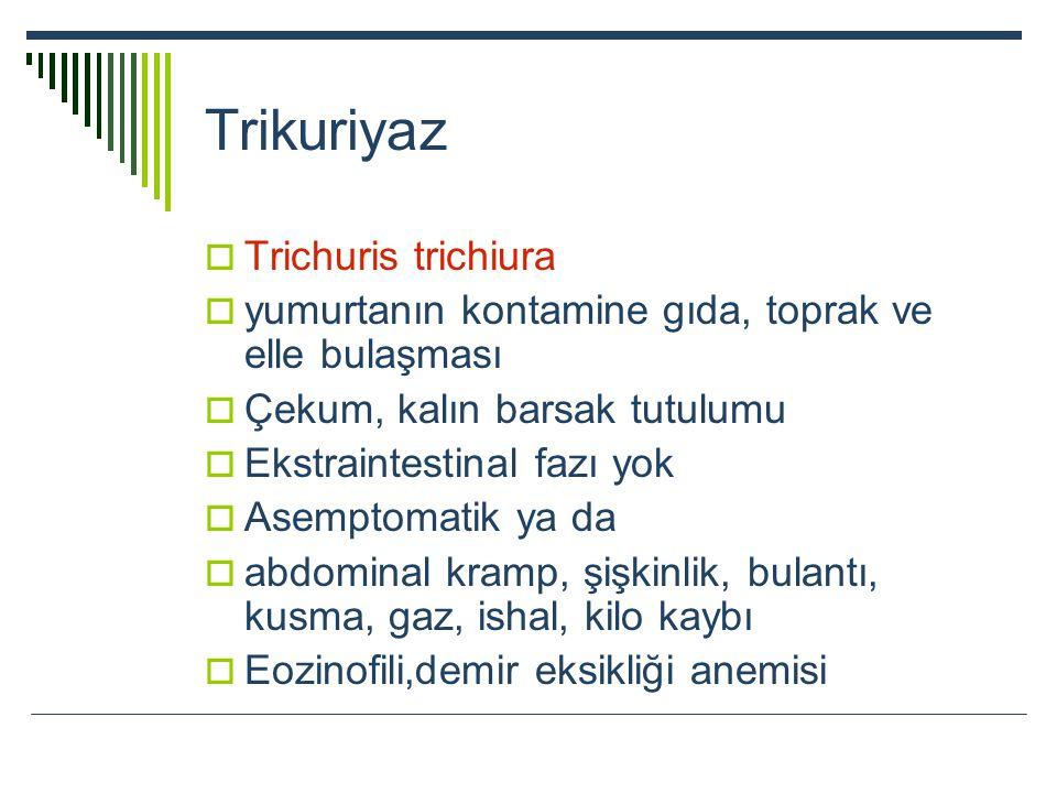Trikuriyaz  Trichuris trichiura  yumurtanın kontamine gıda, toprak ve elle bulaşması  Çekum, kalın barsak tutulumu  Ekstraintestinal fazı yok  As
