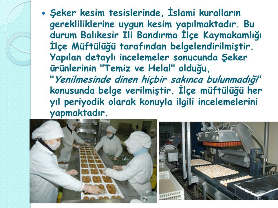 Şeker kesim tesislerinde, İslami kuralların gerekliliklerine uygun kesim yapılmaktadır.