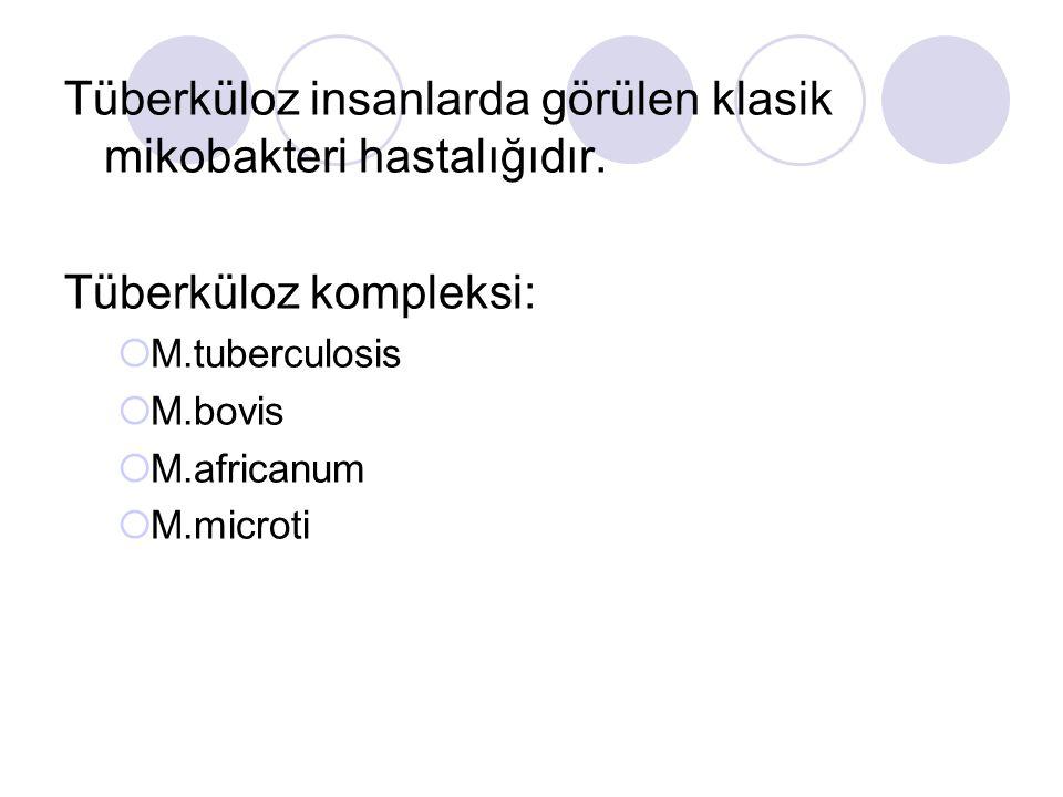 Tüberküloz insanlarda görülen klasik mikobakteri hastalığıdır. Tüberküloz kompleksi:  M.tuberculosis  M.bovis  M.africanum  M.microti