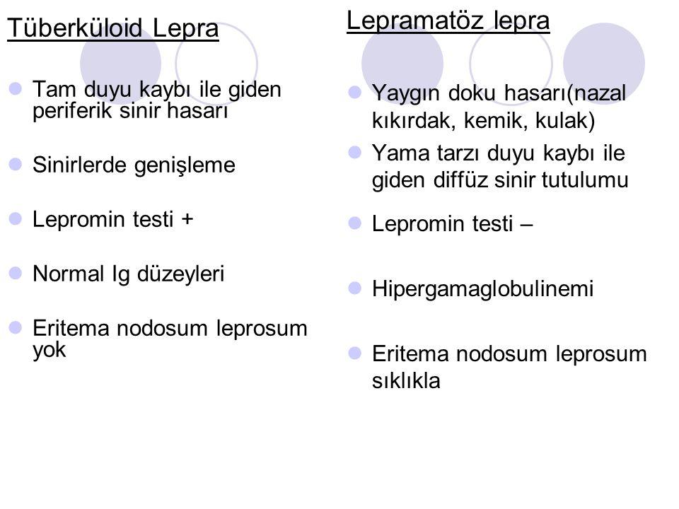 Tüberküloid Lepra Tam duyu kaybı ile giden periferik sinir hasarı Sinirlerde genişleme Lepromin testi + Normal Ig düzeyleri Eritema nodosum leprosum y
