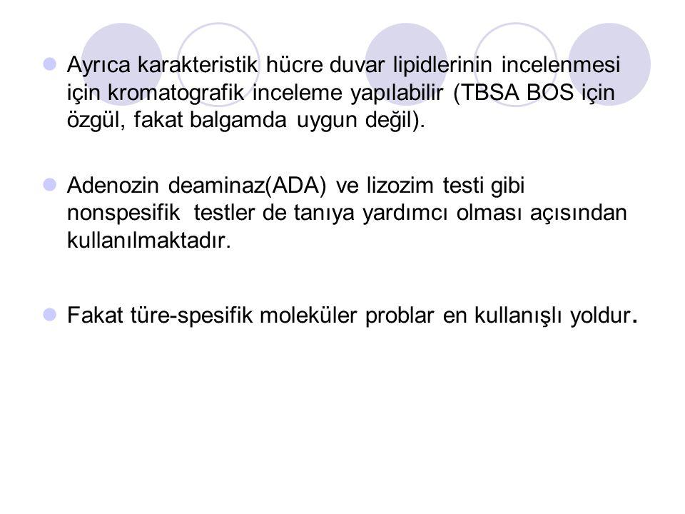 Ayrıca karakteristik hücre duvar lipidlerinin incelenmesi için kromatografik inceleme yapılabilir (TBSA BOS için özgül, fakat balgamda uygun değil). A