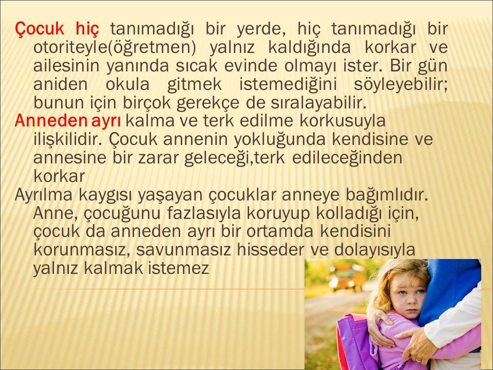 Özcan, Ö., Kılıç, B.G. ve Aysev, A. (2006).