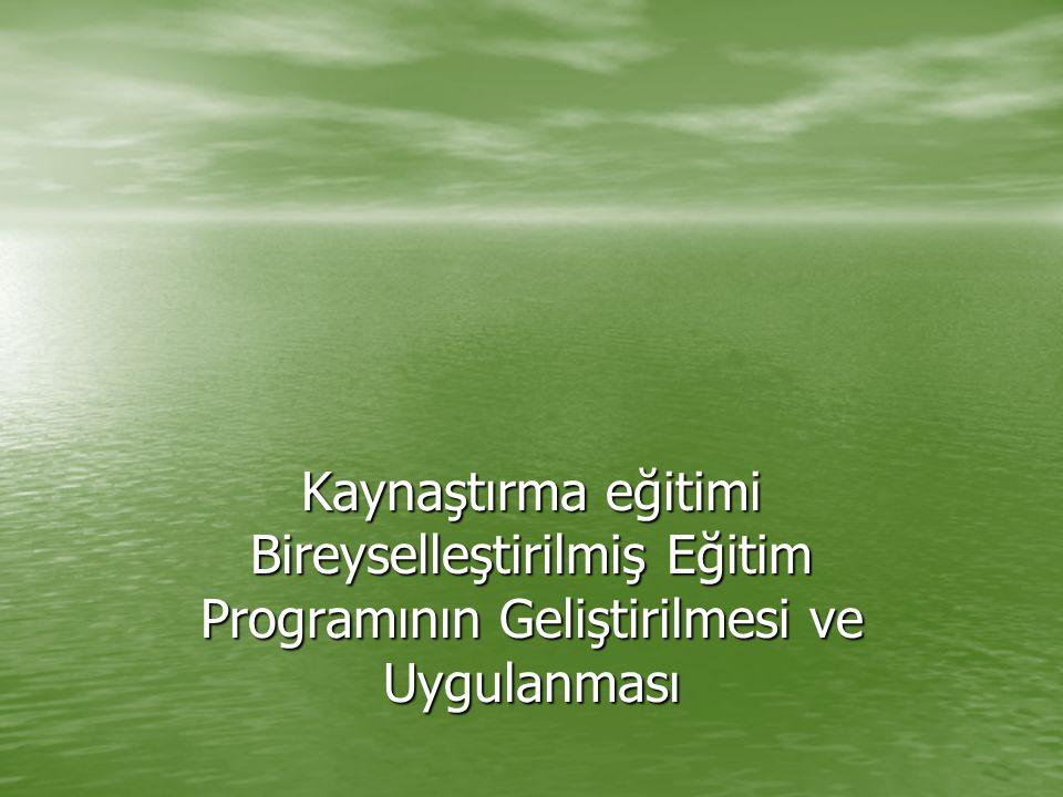 Kaynaştırma eğitimi Bireyselleştirilmiş Eğitim Programının Geliştirilmesi ve Uygulanması