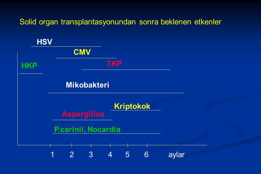 1 2 3 4 5 6 aylar P.carinii, Nocardia Aspergillus Kriptokok Mikobakteri HKP TKP CMV HSV Solid organ transplantasyonundan sonra beklenen etkenler