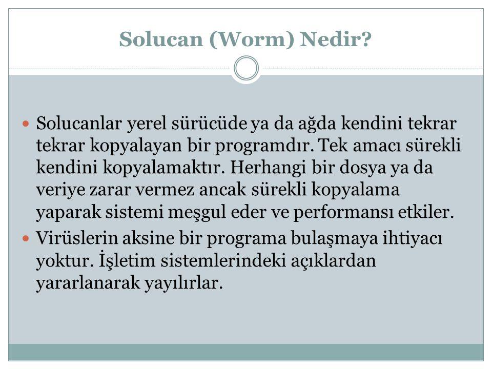 Solucan (Worm) Nedir.
