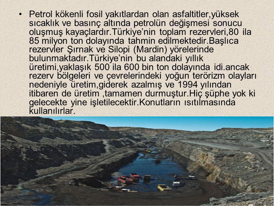 Petrol kökenli fosil yakıtlardan olan asfaltitler,yüksek sıcaklık ve basınç altında petrolün değişmesi sonucu oluşmuş kayaçlardır.Türkiye'nin toplam rezervleri,80 ila 85 milyon ton dolayında tahmin edilmektedir.Başlıca rezervler Şırnak ve Silopi (Mardin) yörelerinde bulunmaktadır.Türkiye'nin bu alandaki yıllık üretimi,yaklaşık 500 ila 600 bin ton dolayında idi.ancak rezerv bölgeleri ve çevrelerindeki yoğun terörizm olayları nedeniyle üretim,giderek azalmış ve 1994 yılından itibaren de üretim,tamamen durmuştur.Hiç şüphe yok ki gelecekte yine işletilecektir.Konutların ısıtılmasında kullanılırlar.