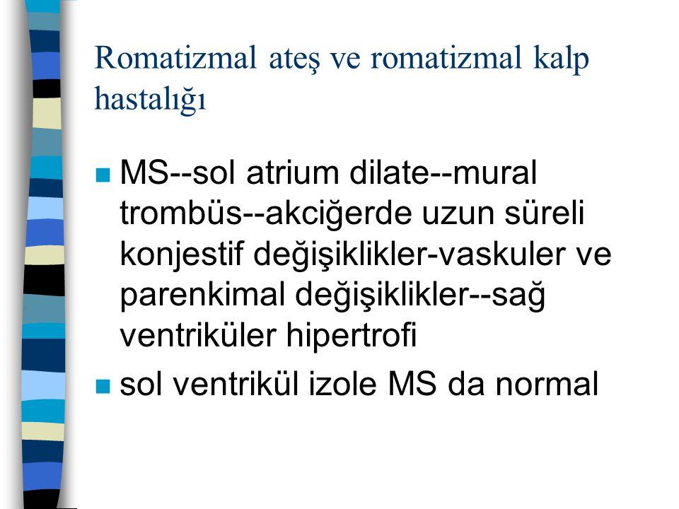 Romatizmal ateş ve romatizmal kalp hastalığı n MS--sol atrium dilate--mural trombüs--akciğerde uzun süreli konjestif değişiklikler-vaskuler ve parenki