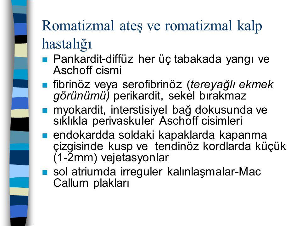 Romatizmal ateş ve romatizmal kalp hastalığı n Pankardit-diffüz her üç tabakada yangı ve Aschoff cismi n fibrinöz veya serofibrinöz (tereyağlı ekmek g