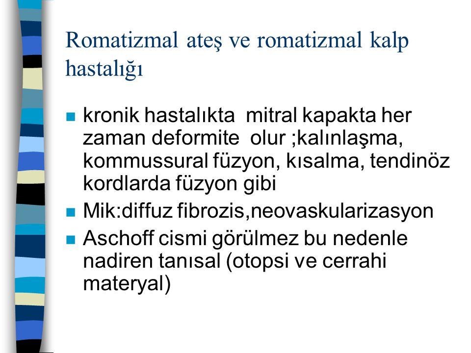 Romatizmal ateş ve romatizmal kalp hastalığı n kronik hastalıkta mitral kapakta her zaman deformite olur ;kalınlaşma, kommussural füzyon, kısalma, ten
