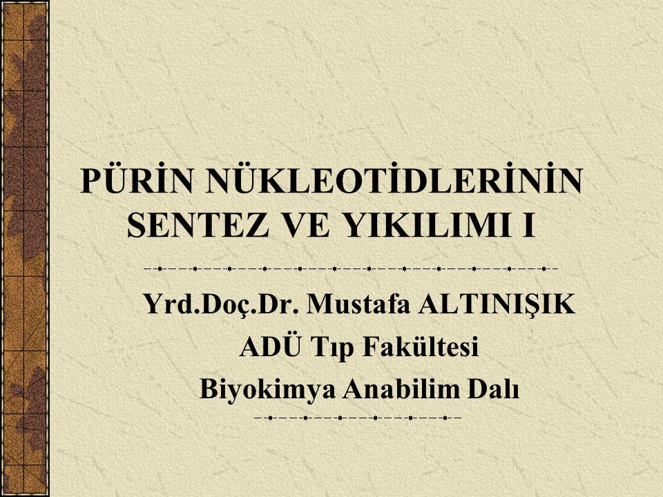 PÜRİN NÜKLEOTİDLERİNİN SENTEZ VE YIKILIMI I Yrd.Doç.Dr. Mustafa ALTINIŞIK ADÜ Tıp Fakültesi Biyokimya Anabilim Dalı