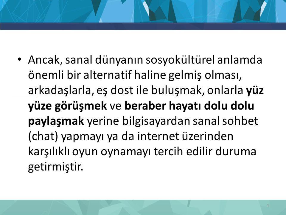 2005 yılında Hacettepe Üniversitesi'nde akademik, idari ve hastane personeli üzerinde bilgisayar kullanımının bireylerin evdeki zaman kullanımına etkisi incelenmiştir.