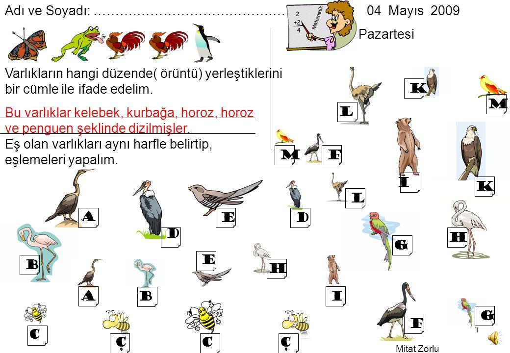 Mitat Zorlu 1 Bu varlıklar kelebek, kurbağa, horoz, horoz ve penguen şeklinde dizilmişler.