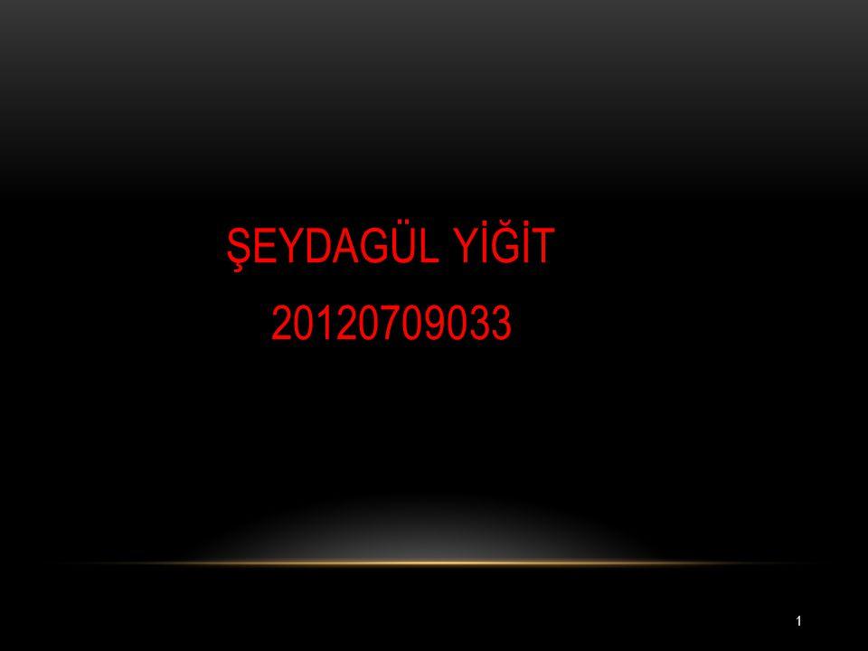 ŞEYDAGÜL YİĞİT 20120709033 1