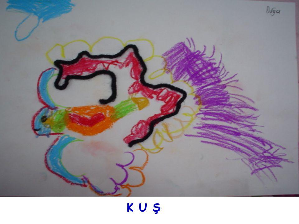 K U Ş