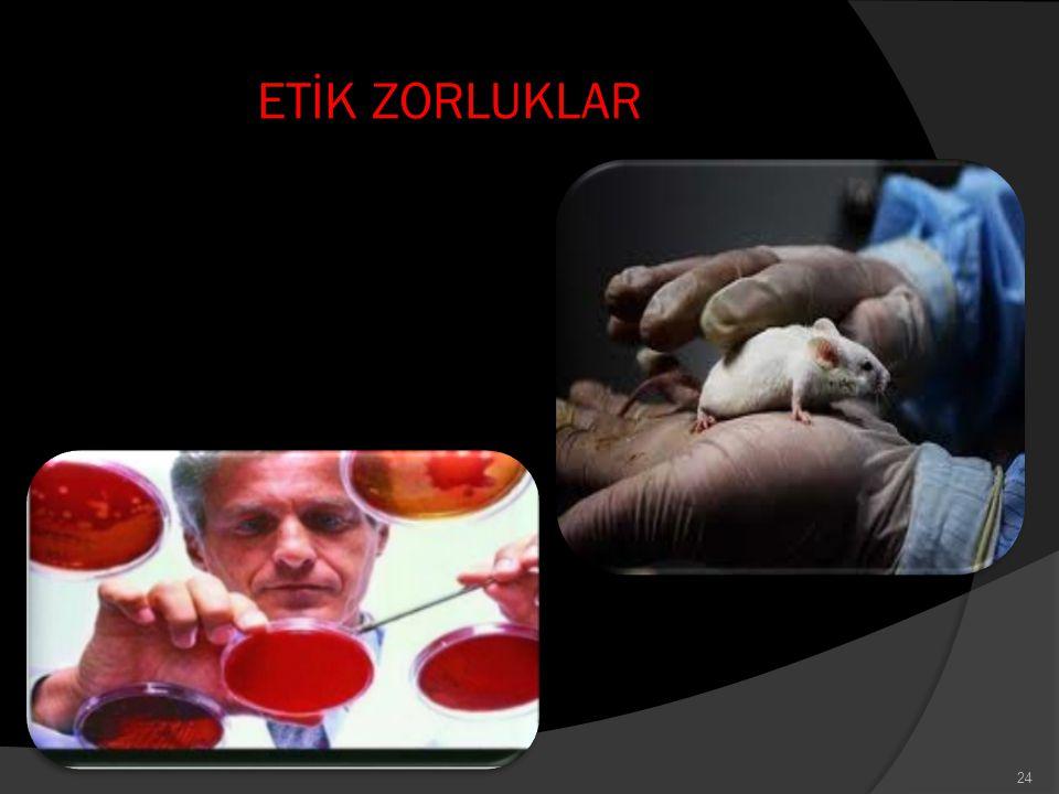 ETİK ZORLUKLAR 24