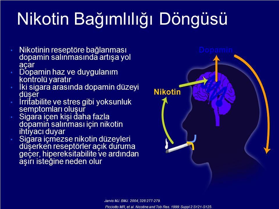 Nikotin Bağımlılığı Döngüsü Nikotinin reseptöre bağlanması dopamin salınmasında artışa yol açar Dopamin haz ve duygulanım kontrolü yaratır İki sigara