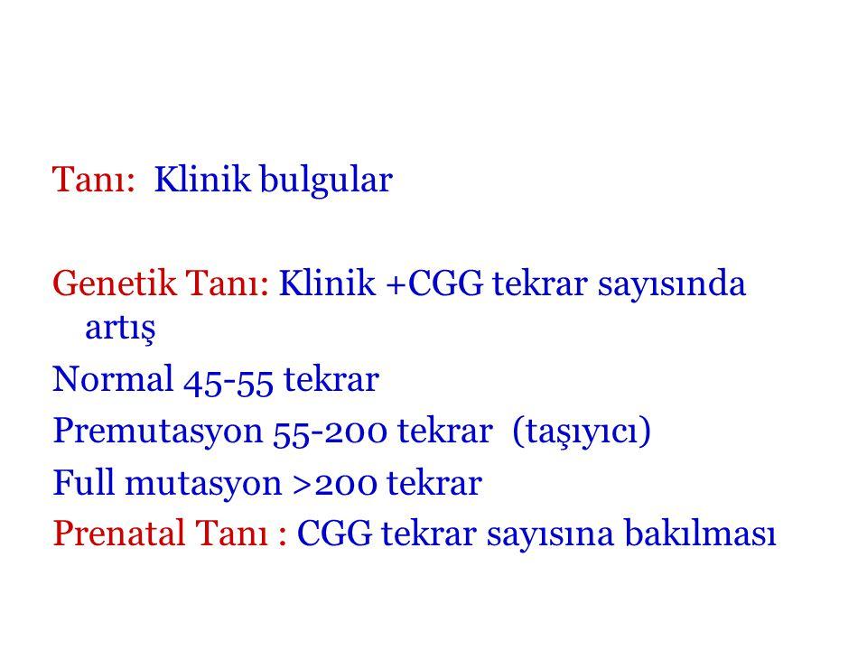 Tanı: Klinik bulgular Genetik Tanı: Klinik +CGG tekrar sayısında artış Normal 45-55 tekrar Premutasyon 55-200 tekrar (taşıyıcı) Full mutasyon >200 tek
