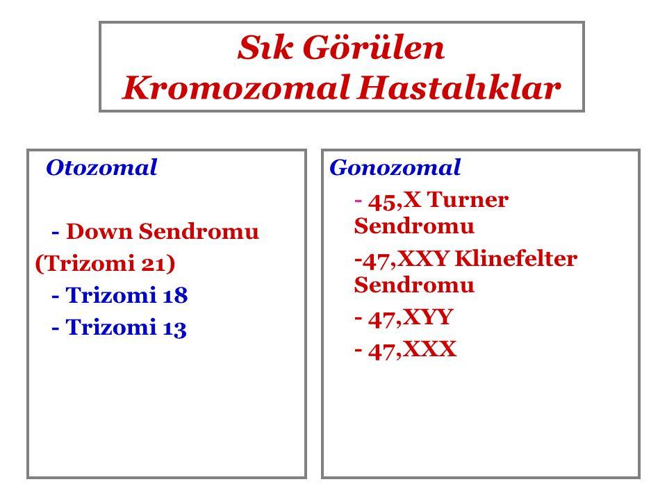 Sık Görülen Kromozomal Hastalıklar Otozomal - Down Sendromu (Trizomi 21) - Trizomi 18 - Trizomi 13 Gonozomal - 45,X Turner Sendromu -47,XXY Klinefelte