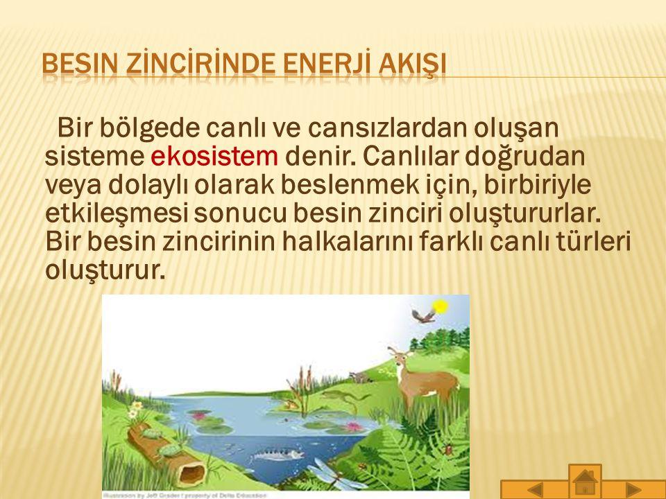 Bir bölgede canlı ve cansızlardan oluşan sisteme ekosistem denir.
