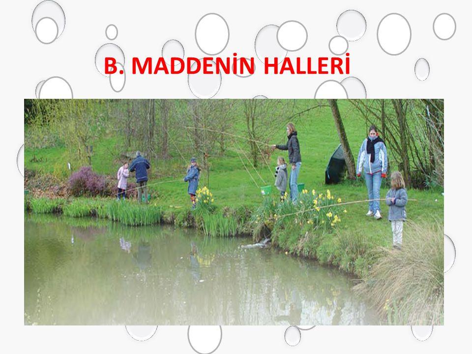 B. MADDENİN HALLERİ