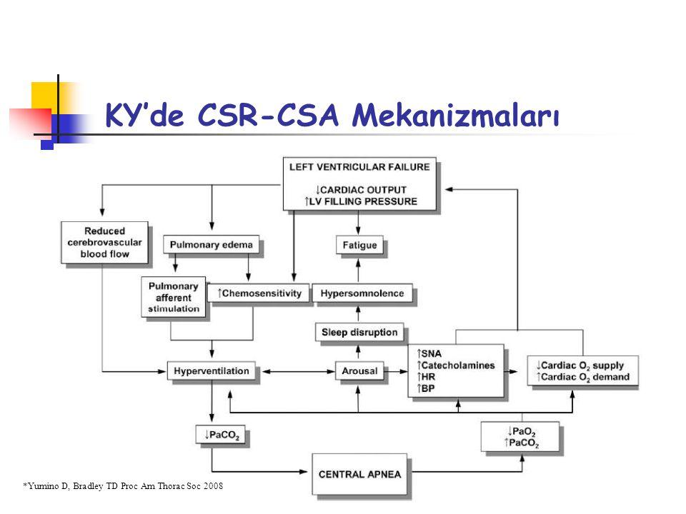 KY'de CSR-CSA Mekanizmaları *Yumino D, Bradley TD Proc Am Thorac Soc 2008