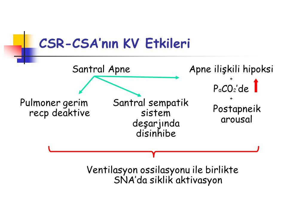 CSR-CSA'nın KV Etkileri Santral Apne Pulmoner gerim recp deaktive Ventilasyon ossilasyonu ile birlikte SNA'da siklik aktivasyon Santral sempatik sistem deşarjında disinhibe Apne ilişkili hipoksi + P a C0 2 'de + Postapneik arousal