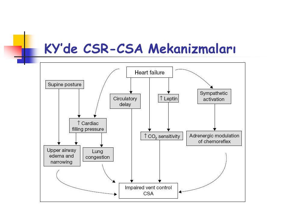 KY'de CSR-CSA Mekanizmaları
