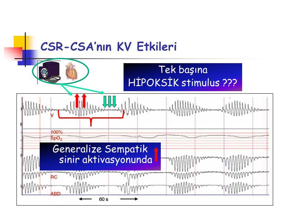 CSR-CSA'nın KV Etkileri Tek başına HİPOKSİK stimulus ??? Generalize Sempatik sinir aktivasyonunda