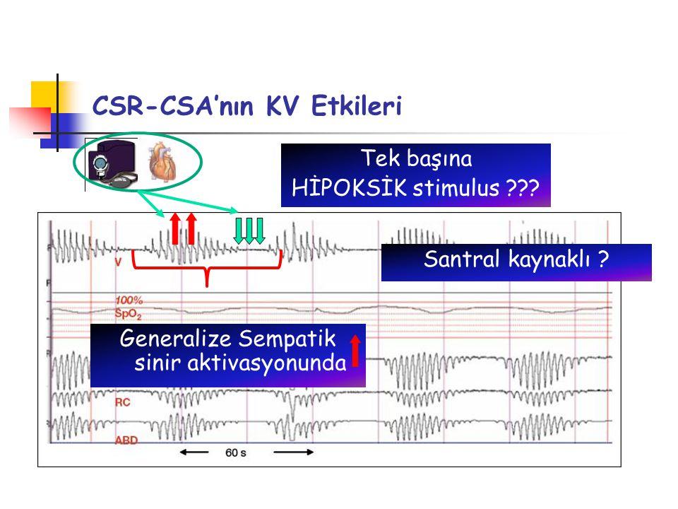 CSR-CSA'nın KV Etkileri Tek başına HİPOKSİK stimulus ??.