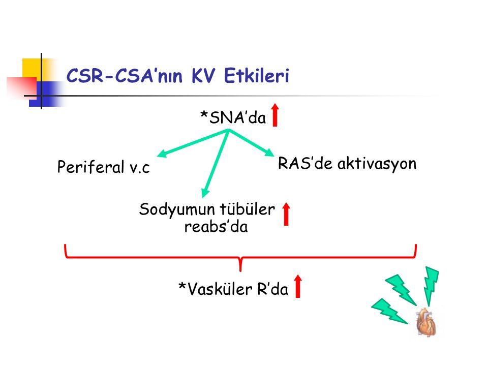 CSR-CSA'nın KV Etkileri *Vasküler R'da Periferal v.c RAS'de aktivasyon Sodyumun tübüler reabs'da *SNA'da