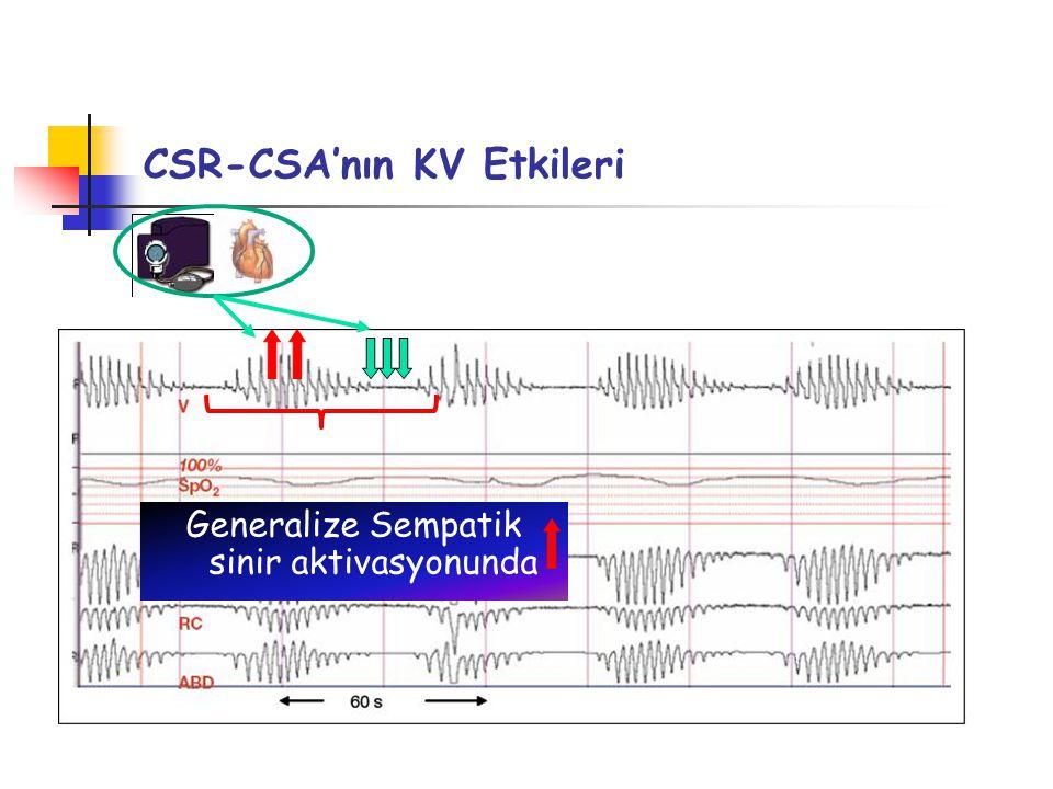 CSR-CSA'nın KV Etkileri Generalize Sempatik sinir aktivasyonunda