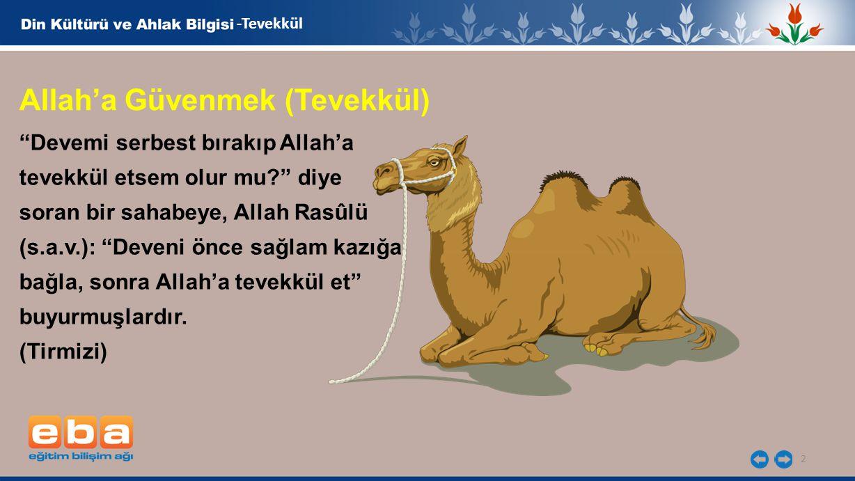 """2 -Tevekkül """"Devemi serbest bırakıp Allah'a tevekkül etsem olur mu?"""" diye soran bir sahabeye, Allah Rasûlü (s.a.v.): """"Deveni önce sağlam kazığa bağla,"""