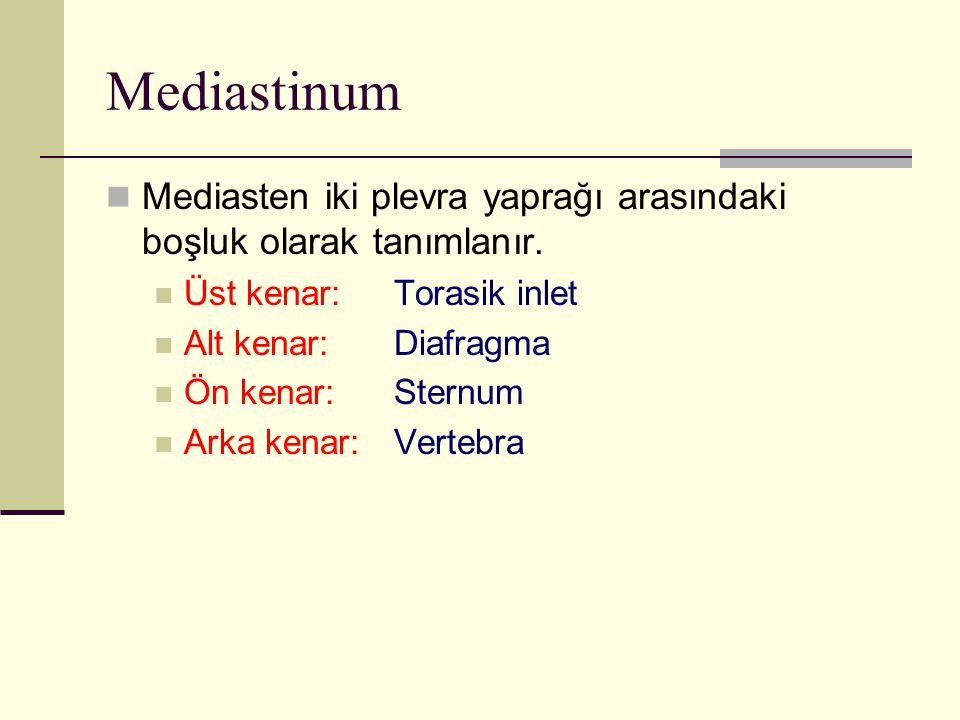 Mediastinum Mediasten iki plevra yaprağı arasındaki boşluk olarak tanımlanır. Üst kenar: Torasik inlet Alt kenar: Diafragma Ön kenar: Sternum Arka ken