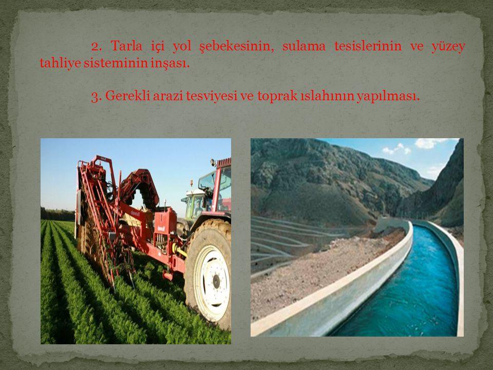 2. Tarla i ç i yol şebekesinin, sulama tesislerinin ve y ü zey tahliye sisteminin inşası. 3. Gerekli arazi tesviyesi ve toprak ıslahının yapılması.