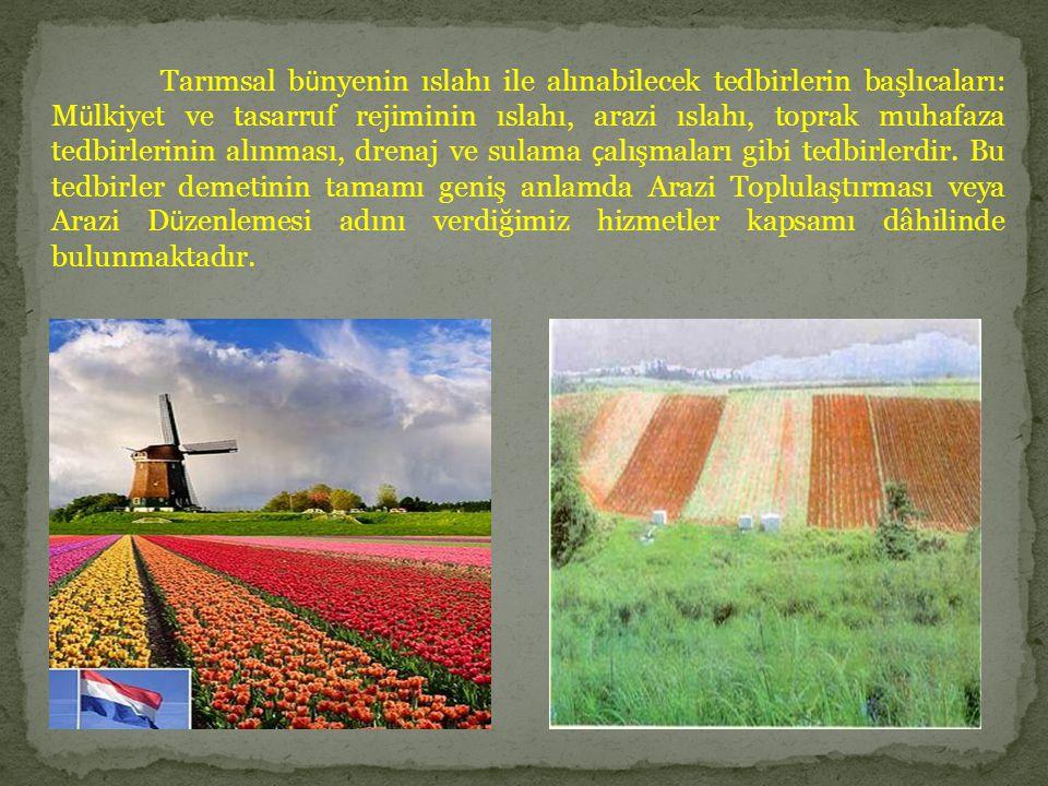 Tarımsal b ü nyenin ıslahı ile alınabilecek tedbirlerin başlıcaları: M ü lkiyet ve tasarruf rejiminin ıslahı, arazi ıslahı, toprak muhafaza tedbirleri