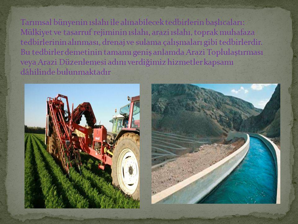 Tarımsal bünyenin ıslahı ile alınabilecek tedbirlerin başlıcaları: Mülkiyet ve tasarruf rejiminin ıslahı, arazi ıslahı, toprak muhafaza tedbirlerinin