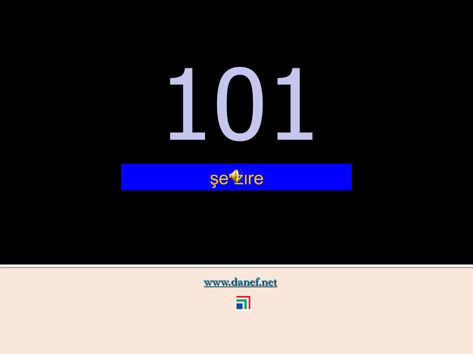 www.danef.net 100 100 şe